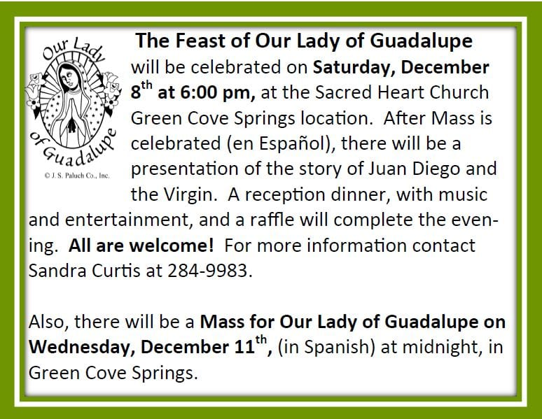 20191117 Feast of Our Lady of Guadalupe